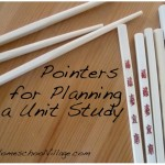 Pointers for Planning a Unit Study