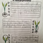 Hands of a Child Plants Note Pack Review