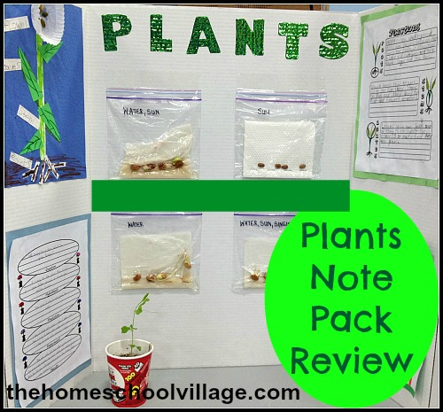 Plants note pack Review