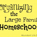 Schedules and Planners for the Large Family