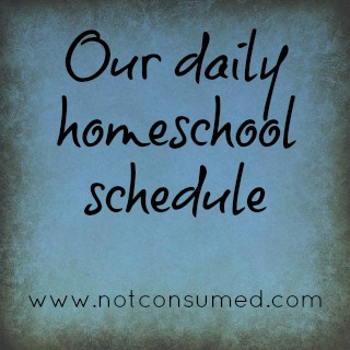 Are you struggling to stick with a schedule? I think you will find this post encouraging!