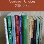 Curriculum Choices: 4th grade and 2nd grade