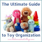 Ultimate Toy Organization List