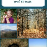 Discovering Your Parks and Forests