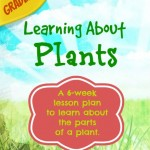Learning All About Plants (6-week lesson plans)
