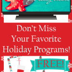 Holiday Program Guide - FREEBIE