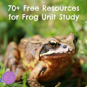 Free Frog Life Cycle Resources