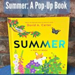 Summer A Pop Up Book