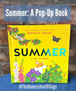 Summer: A Pop Up Book